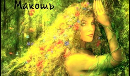 makosh2