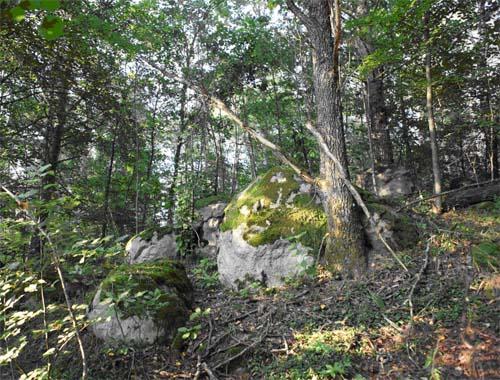 Урочище Кам'яний брід, понад р. Льва, с.Олександрівка, Рокитнівський район